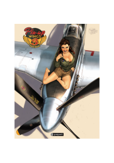 Pin-Up  Wings T3